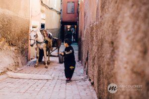 Bosworth Property Marrakech