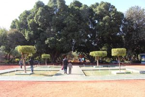 Marrakech Parks and Gardens - Riads For Sale Marrakech - Marrakech Real Estate - Immobilier Marrakech