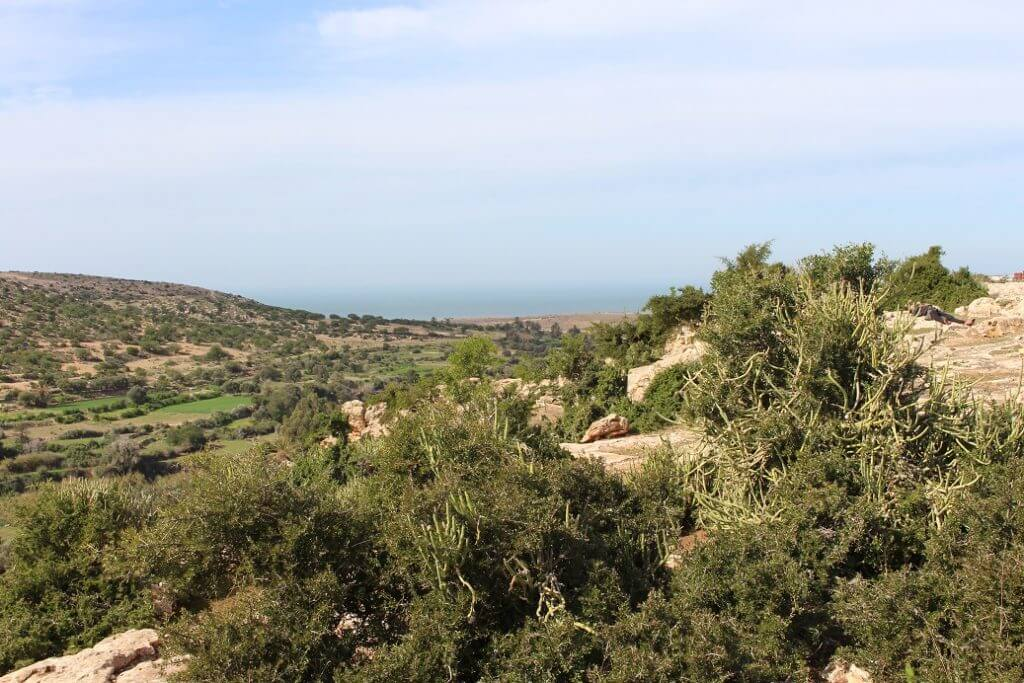 Land-For-Sale-Sidi-Kaouki-from-Bosworth-Property-Marrakech-Real-Estate-Riads-For-Sale-Marrakech-Immobilier-Marrakech-Terrain-A-Vendre-Essaouira-12-1024x683