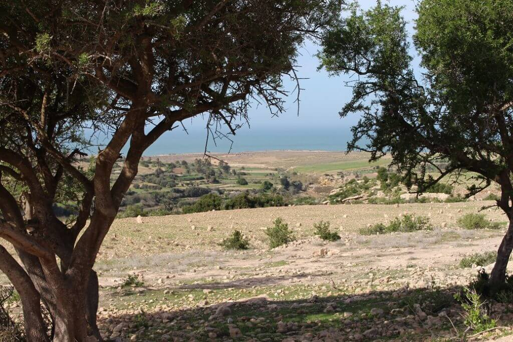 Land For Sale Sidi Kaouki Morocco from Bosworth Property - Riads For Sale Marrakech - Riad For Sale Marrakech - Invest Morocco - Marrakech Realty - Marrakech Real Estate - Immobilier Marrakech - Riads a Vendre