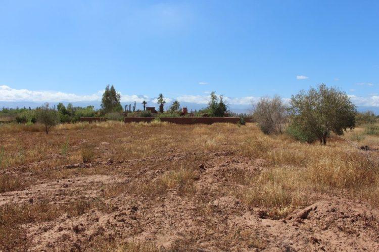 Building Land For Sale Marrakech - Riads For Sale Marrakech from Bosworth Property - Marrakech Real Estate - Marrakech Realty - Immobilier Marrakech - Riads a Vendre Marrakech