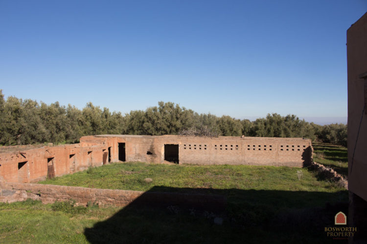 Olive Grove Building Land For Sale Marrakech - Riads For Sale Marrakech - Riad For Sale Marrakech - Marrakesh Realty - Marrakech Real Estate - Immobilier Marrakech - Riads a Vendre Marrakech