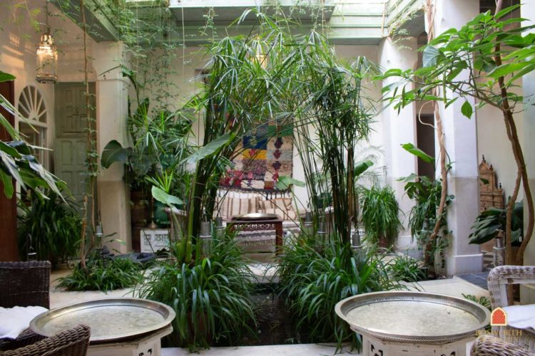 Riads For Sale Marrakech - Gorgeous Garden Riad For Sale Marrakech - Marrakesh Realty - Marrakech Real Estate - Immobilier Marrakech - Riads a Vendre Marrakech