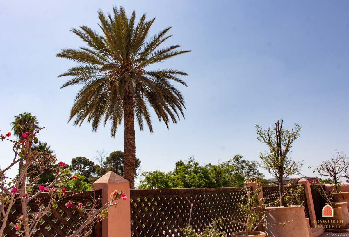 Riads For Sale Marrakech -Bargain Riad Gesthouse For Sale Marrakech - Marrakesh Realty - Marrakech Real Estate - Immobilier Marrakech - Riads a Vendre Marrakech