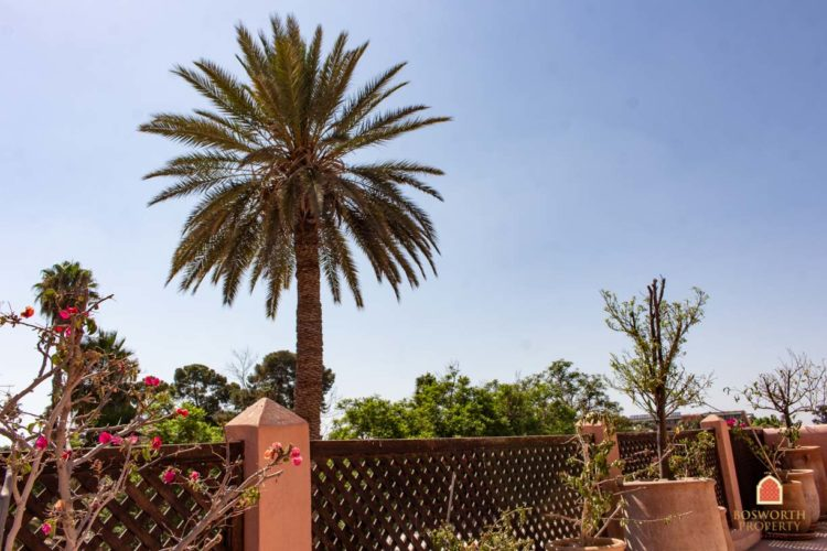 Riads For Sale Marrakech -Bargain Riad Gesthouse For Sale Marrakech - Marrakesh Realty - Marrakech Real Estate - Immobilier Marrakech - Riads a Vendre Marrakech